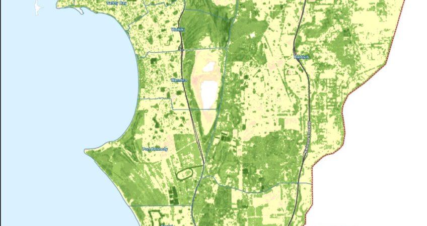 Figure_1_NDVI_From_Landsat8_2015
